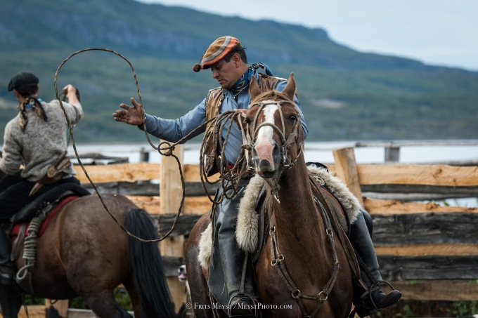 Patagonia Cattle Roundup with the Gauchos of Estancia Mercedes