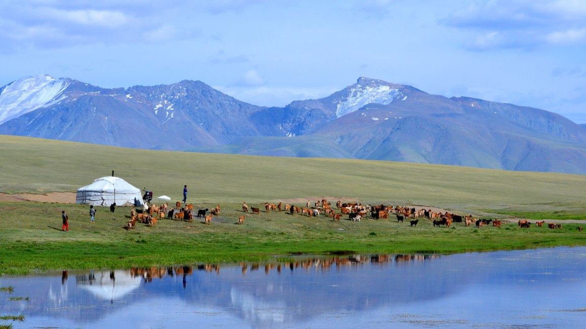 Exploring The World: Setting Off To Mongolia