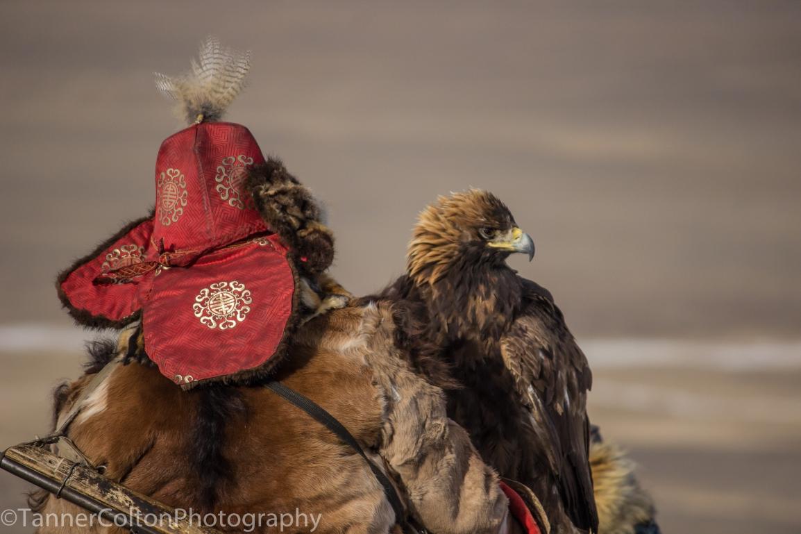 Top 5 Reasons To Visit Mongolia ThisYear