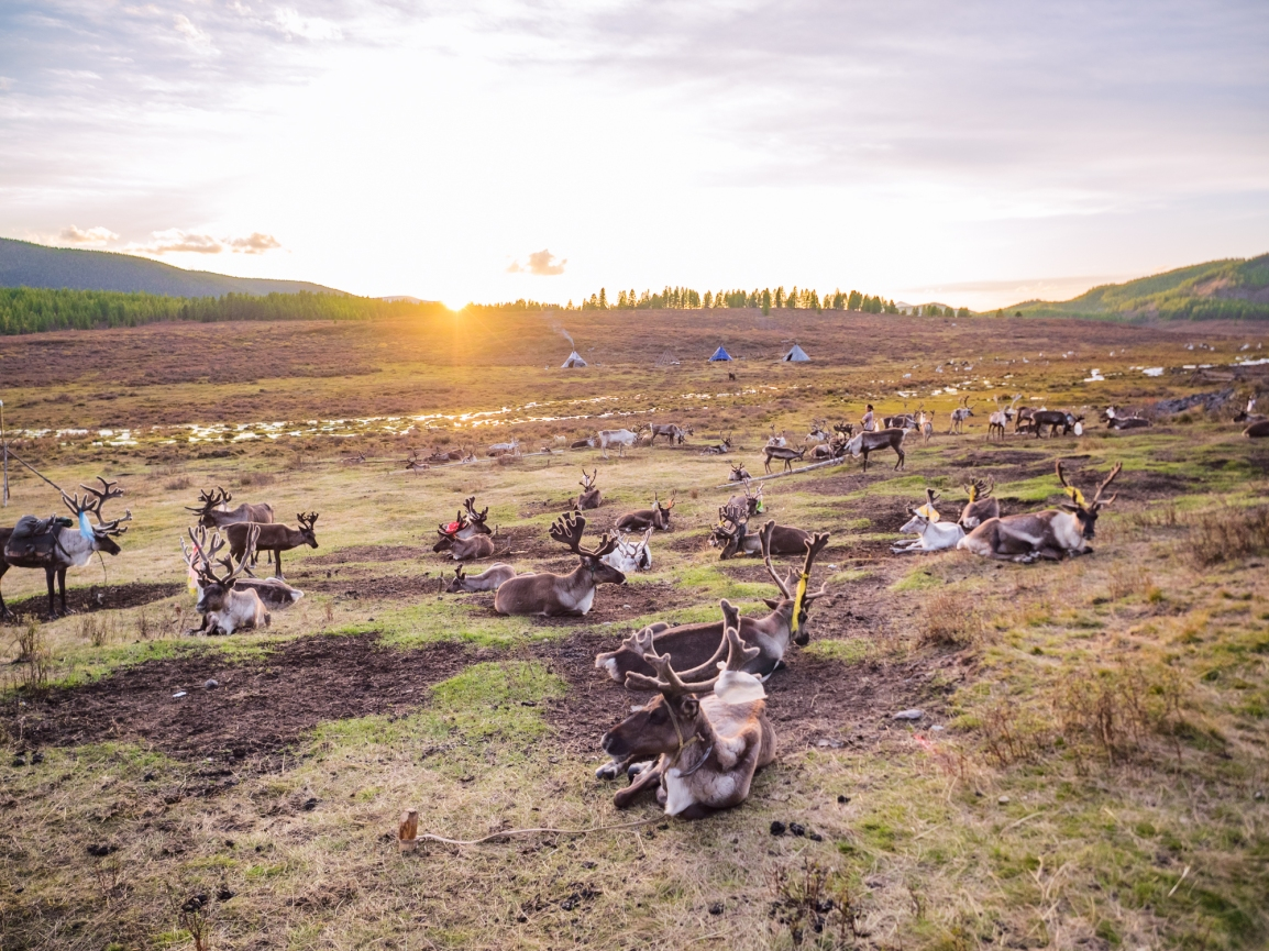 How To Get Off The Beaten Path In Mongolia in 14Days