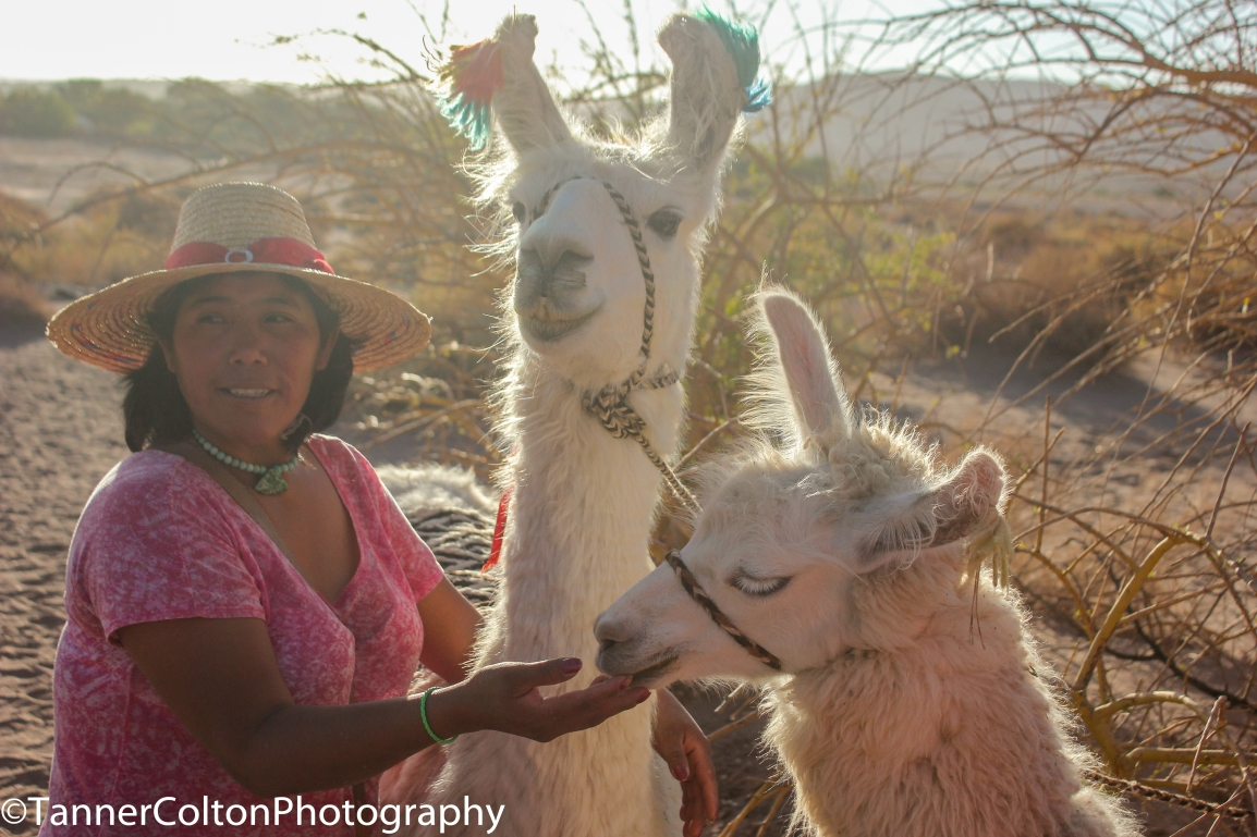 When We Can Travel Again, This Is Why You Should Add The Atacama Region Of Chile To Your List
